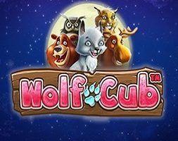Wolf Club Online Kostenlos Spielen
