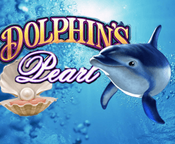 Dolphins Pearl Strategie