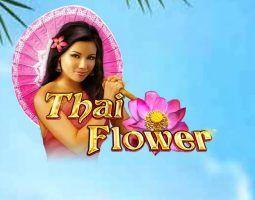 Thai Flower Online Kostenlos Spielen